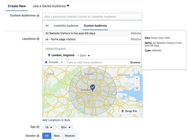 Custom Audiences Screenshot